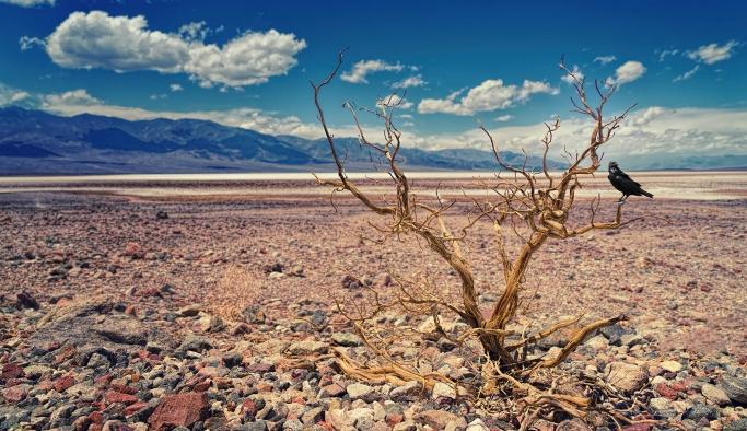 100 yıl içinde daha şiddetli bir kuraklık döngüsü bekleniyor!