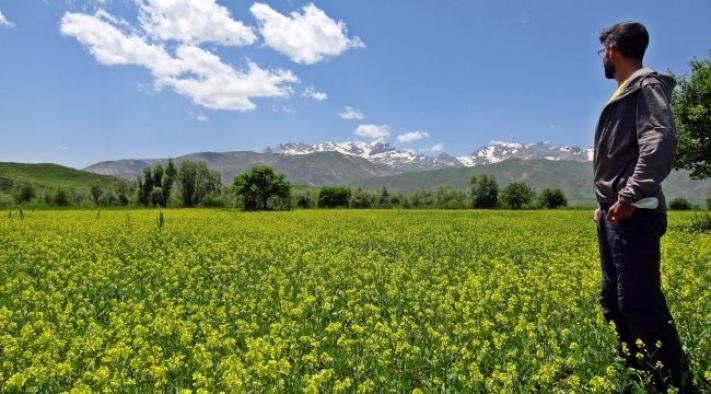 İsviçreli turist dağlarımıza hayran kaldı