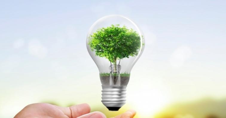 Karbon emilimini azaltmak için Avrupa Birliği somut adımlar atıyor
