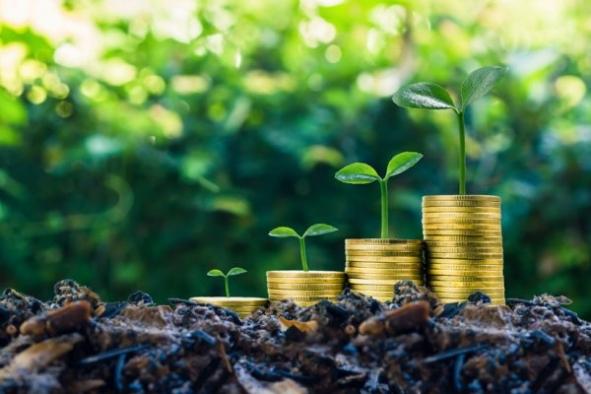 Sürdürülebilir finansman ihraçları rekor kırdı. Yeşil tahviller 4 kat arttı!