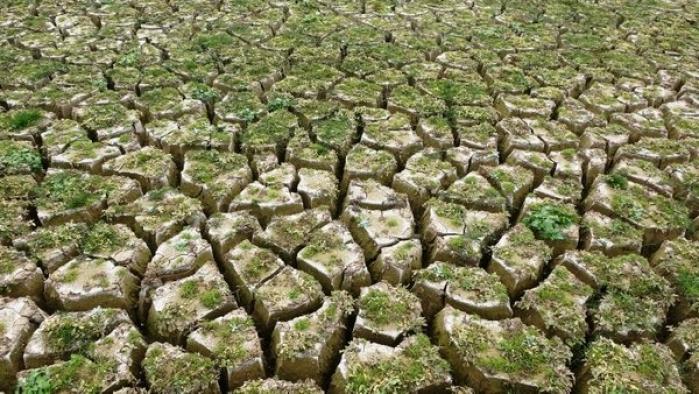 Tarımda kuraklık riski : 2 milyon tonluk kayıp bekleniyor