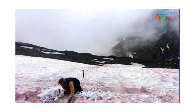 Alpler'de 'kırımızı kar' görüldü