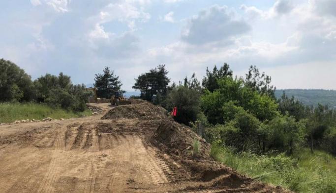 Bursa Nilüfer'de yol çalışması bahanesiyle ağaçlar kesildi