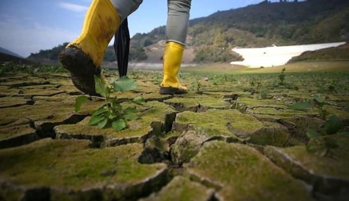 İklim krizine bağlı can kayıpları artıyor