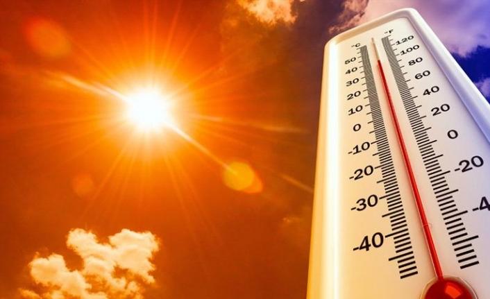 Avrupa kıtasında en sıcak yaz bu yıl yaşandı