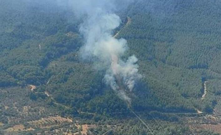 İzmir'de çıkan orman yangını söndürüldü