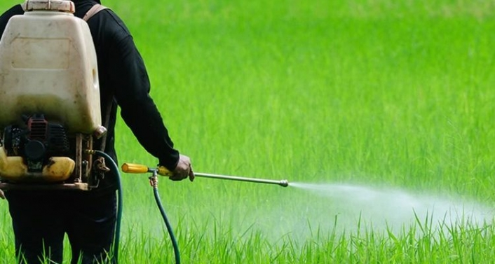 Bülent Şık: Türkiye'de tarımda yasaklanan birçok pestisit kullanılmaya devam ediyor