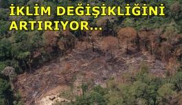 Toprak erozyonu: '3,2 milyar kişiyi etkiliyor, iklim değişikliğini artırıyor'