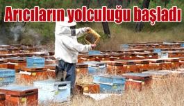 Arıcıların yolculuğu başladı