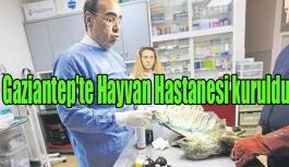 Gaziantep'te Hayvan Hastanesi kuruldu