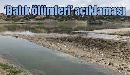 Tarım ve Orman Bakanlığından 'balık ölümleri' açıklaması