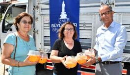 """Büyükşehir  """"Akdeniz Meyve Sineği"""" sorununu çözüyor"""