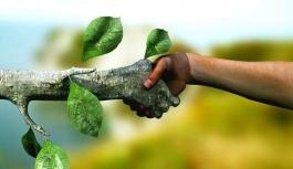 Doğal yaşamın istismarı yaşamın dengesini bozuyor