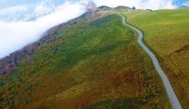Danıştay, Yeşil Yol Projesi'ni iptal etti