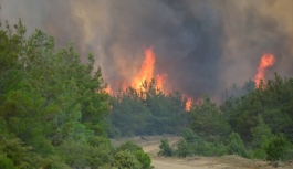 Gelibolu Yarımadası'nda büyük yangın! Köyler boşaltılıyor