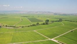 Çevre ve Şehircilik Bakanlığı aromatik bitki üreticilerine arazi kiralıyor