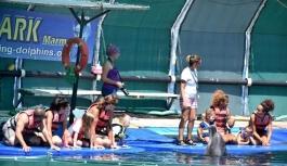 Marmaris'teki dünyaca ünlü yunus parkı mühürlendi