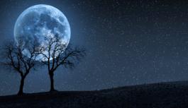 """31 Ekim'de nadir görülen """"mavi dolunay"""" gerçekleşecek"""
