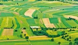 Hazineye ait tarım arazileri üretime açılıyor
