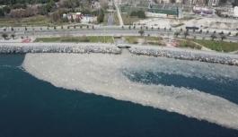 İstanbul sahilleri deniz salyasıyla doldu
