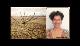 Dr. Akgün İlhan çölleşmeyle mücadele gününde uyardı: Ayağımızı suyumuza göre uzatalım