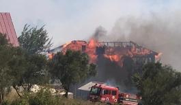 Bornova Beşyol'da orman yangını...