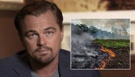 DiCaprio'dan 'Amazon'u yakan havalı adam' açıklamasına yanıt