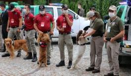 Hayvanları koruma polisleri 81 ilde görev...