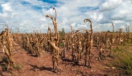 İklim değişikliği nedeniyle öngörülen ekonomik zarar 30 trilyon dolar