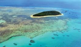 UNESCO'ya göre Büyük Bariyer Resifi'nin Dünya Mirası Listesi'ne dahil edilmesi gerekiyor