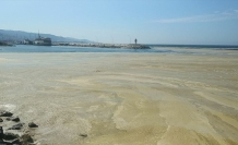 Bakan Kurum'dan deniz salyası açıklaması