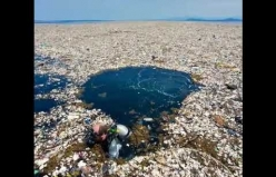 """""""Sadece bir saman, tek kullanımlık bir bardak, sadece bir plastik torba"""" - 7,4 milyar insan."""