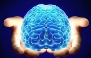 Beynimiz yaşadığımız çevre koşullarından etkileniyor!