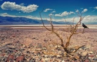 100 yıl içinde daha şiddetli bir kuraklık döngüsü...