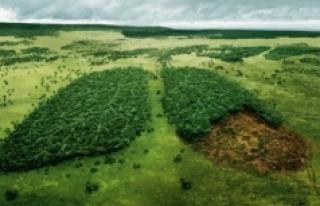 2100 yılında oksijen sıkıntısı çekeceğiz