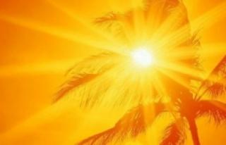 Dünya en sıcak son 10 yılı yaşadı