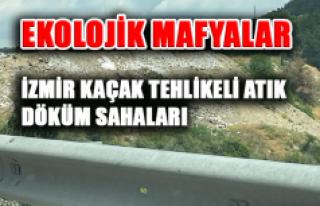 EKOLOJİK MAFYALAR