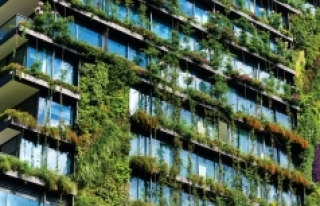 İklim değişikliğine karşı kentler yarışıyor