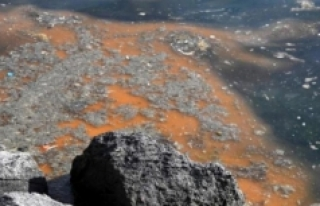 Marmara'da deniz salyası tehlikesi büyüyor