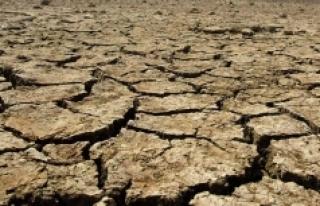 """Prof. Dr. Şengün: """"Kuraklığın iklim değişimi..."""