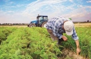 Tam kapanmada çiftçiler nasıl çalışacak?