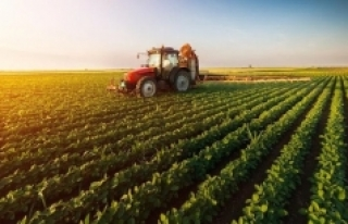 Tarımın kurtuluşu dijital çiftçilikte