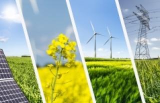 Yenilenebilir enerjide 'dağıtım kurulumları'...