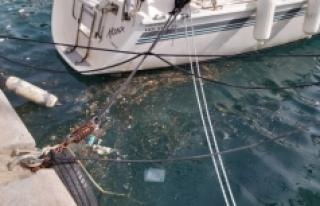 Datça'da denizde oluşan kirlilikle ilgili inceleme...