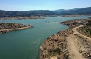 Kuraklık Adnan Menderes Barajı'nı vurdu; doluluk...
