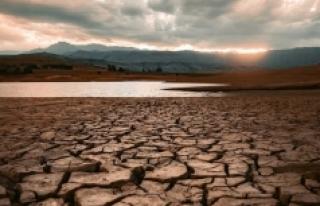 Prof. Dr. Şaylan'dan kuraklık uyarısı: Zararları...