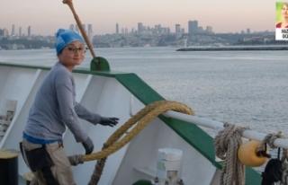 Greenpeace'in buzul kıran gemisi Marmara İçin...