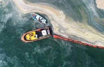 Çevre Deniz Kültürü Derneği: Müsilaj bitmedi, Marmara can çekişmeye devam ediyor