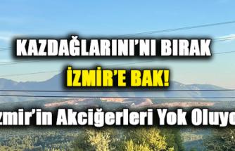 İZMİR'İN CİĞERLERİ TAŞ OCAKLARIYLA YOK OLUYOR!