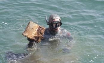 Aliağa'da Festival Havasında Dip Kıyı Temizlik Etkinliği